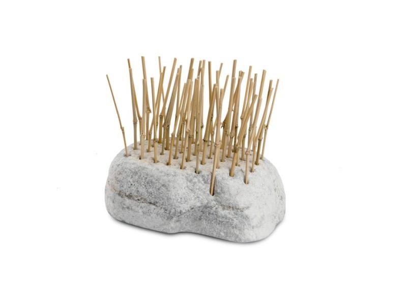 Piedra Raíz Con Huecos