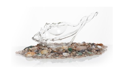 Escargot de Mer