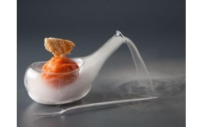 Cryo casserole ovoide