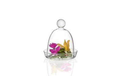 Mini Glocke mit Platte aus Borosilikatglas
