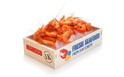 Seafood Kiste bedruckt
