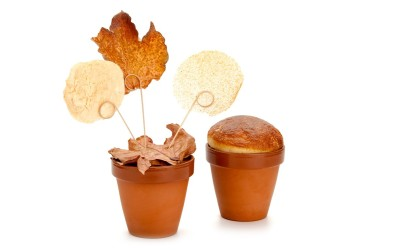 Vaso di Terracotta Miniatura