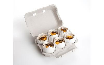 Uovo Rotto Porcellana