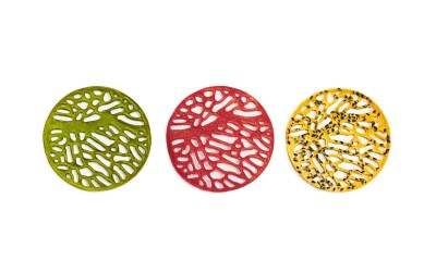 Radikulados Algae Mould